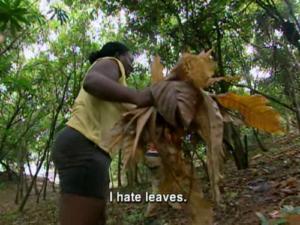 Cirie I hate leaves