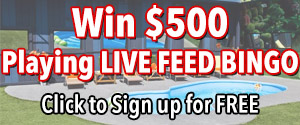 Win $500 playing Big Brother Live Feed Bingo on RHAP for FREE