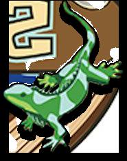 right-lizard-shadow